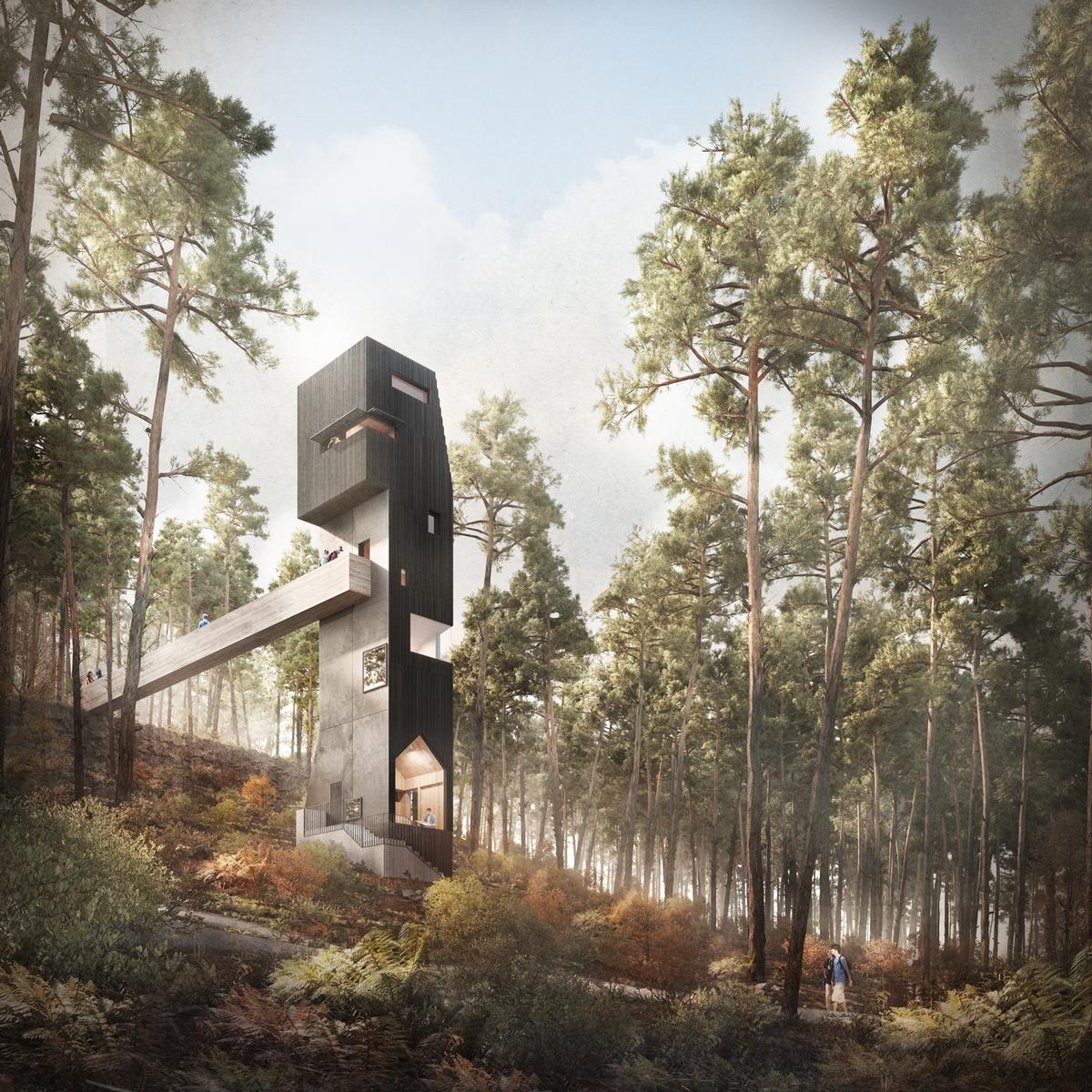 The structure features a bird hide at its peak, offering views of the surrounding tree canopies and allowing visitors to observe the local wildlife