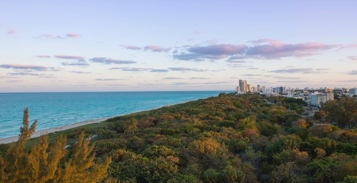 Eighty Seven Park's developer, Terra, is putting $10m (€8.5m, £7.6m) towards the North Shore Park transformation