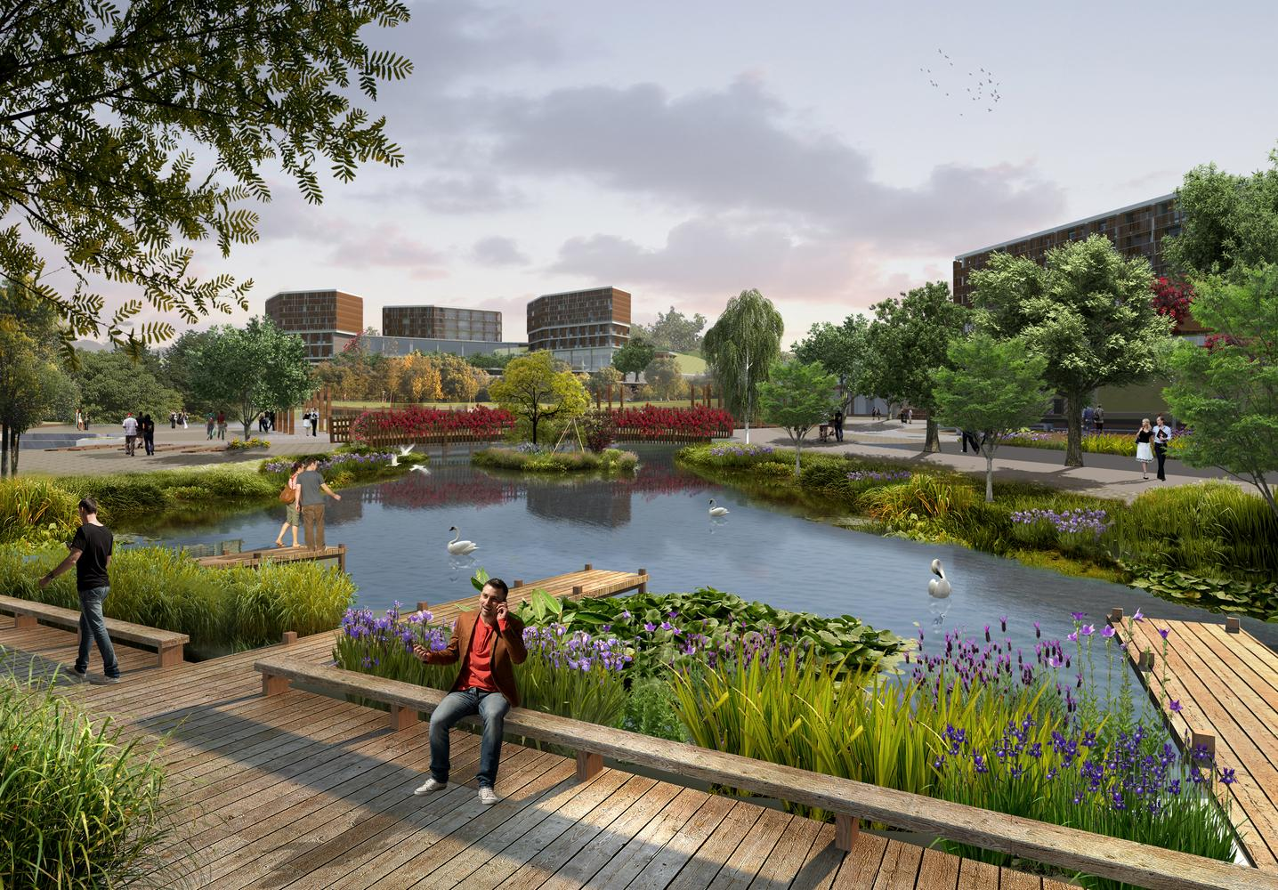 A 1200sq m biological pond uses plants with fibrous roots and reeds to keep the water clean / Project Design Group
