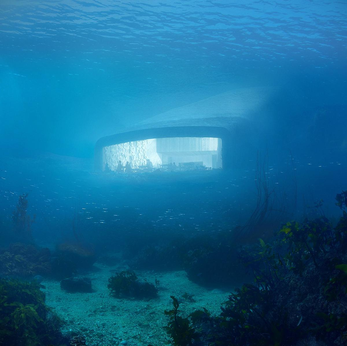 Researchers will make use of Under's large acrylic windows to study the surrounding ocean life / Courtesy of Snøhetta