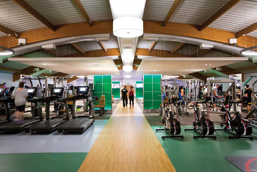 The UK's David Lloyd Leisure ranked second in terms of revenue, and fifth in terms of membership numbers