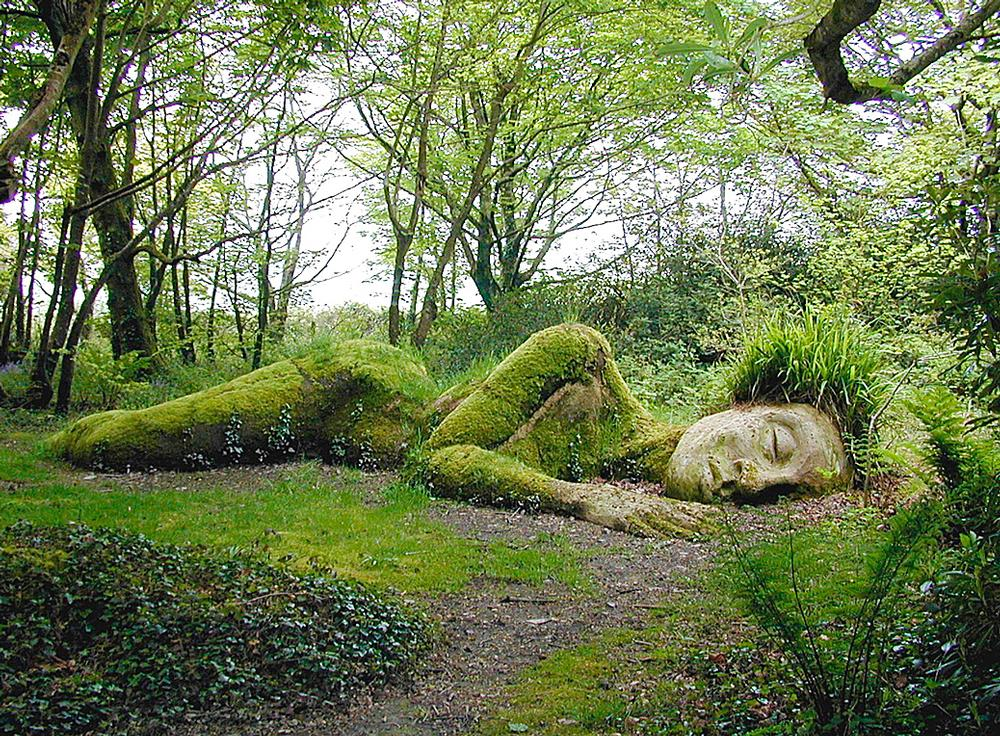 Heligan Gardens / photo: Julian Stephens, Heligan Gardens