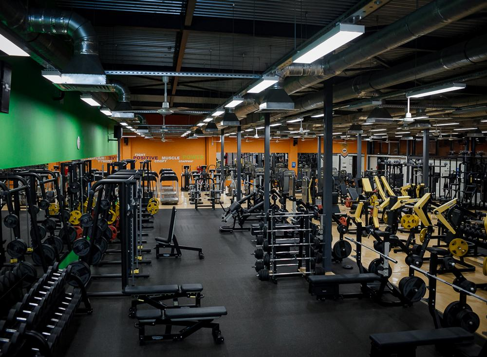 There are currently 61 Alex Fitness sites  either open or in development