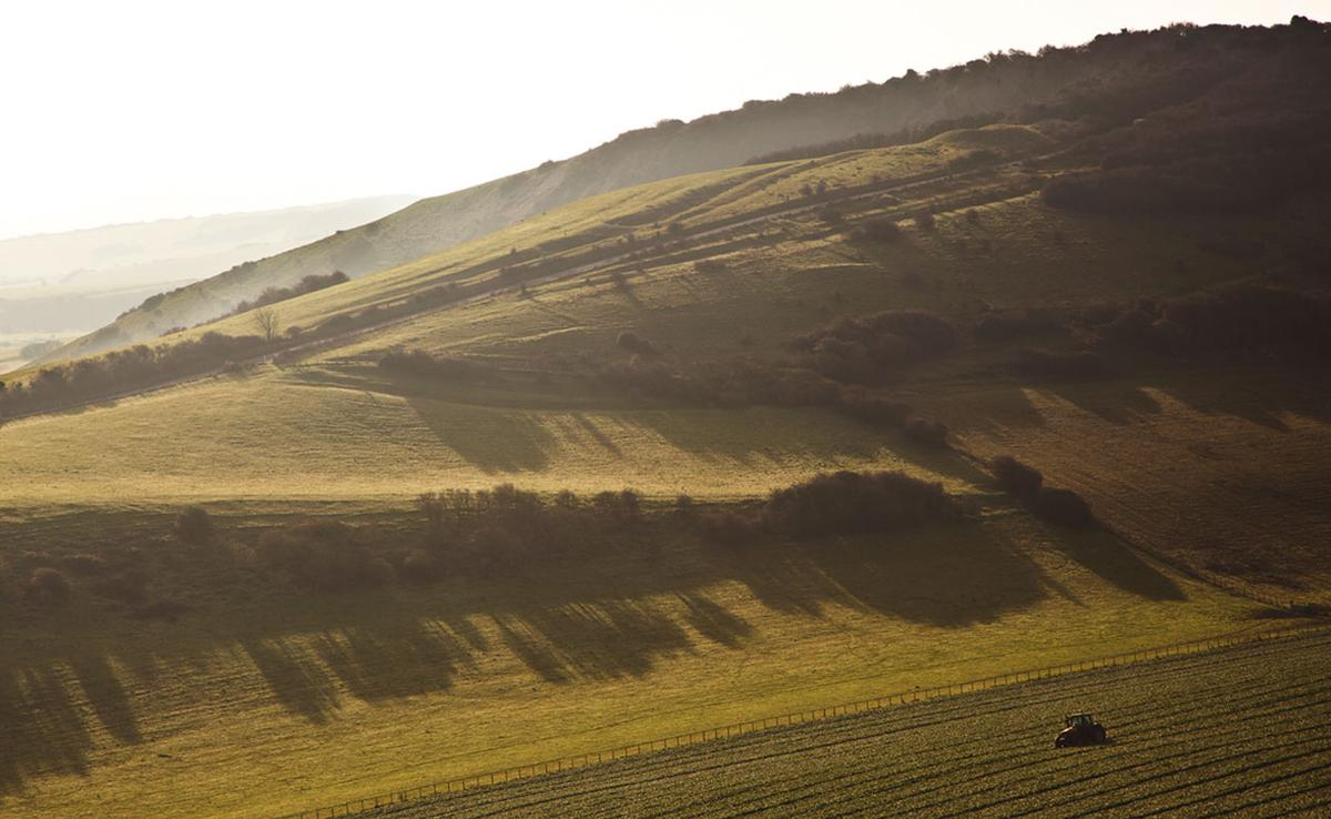 Rathfinney wine estate in Sussex is currently expanding both its winery and visitor facilities due to demand / Rathfinney