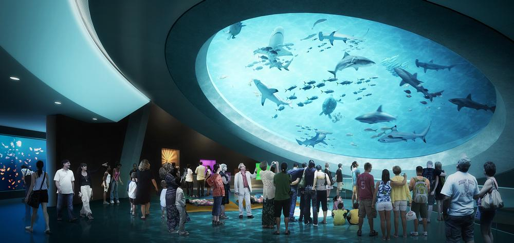 A rendering shows the mezzanine in the Frost Museum of Science in Miami, Florida, which opens in 2016 / PHOTO: Grimshaw