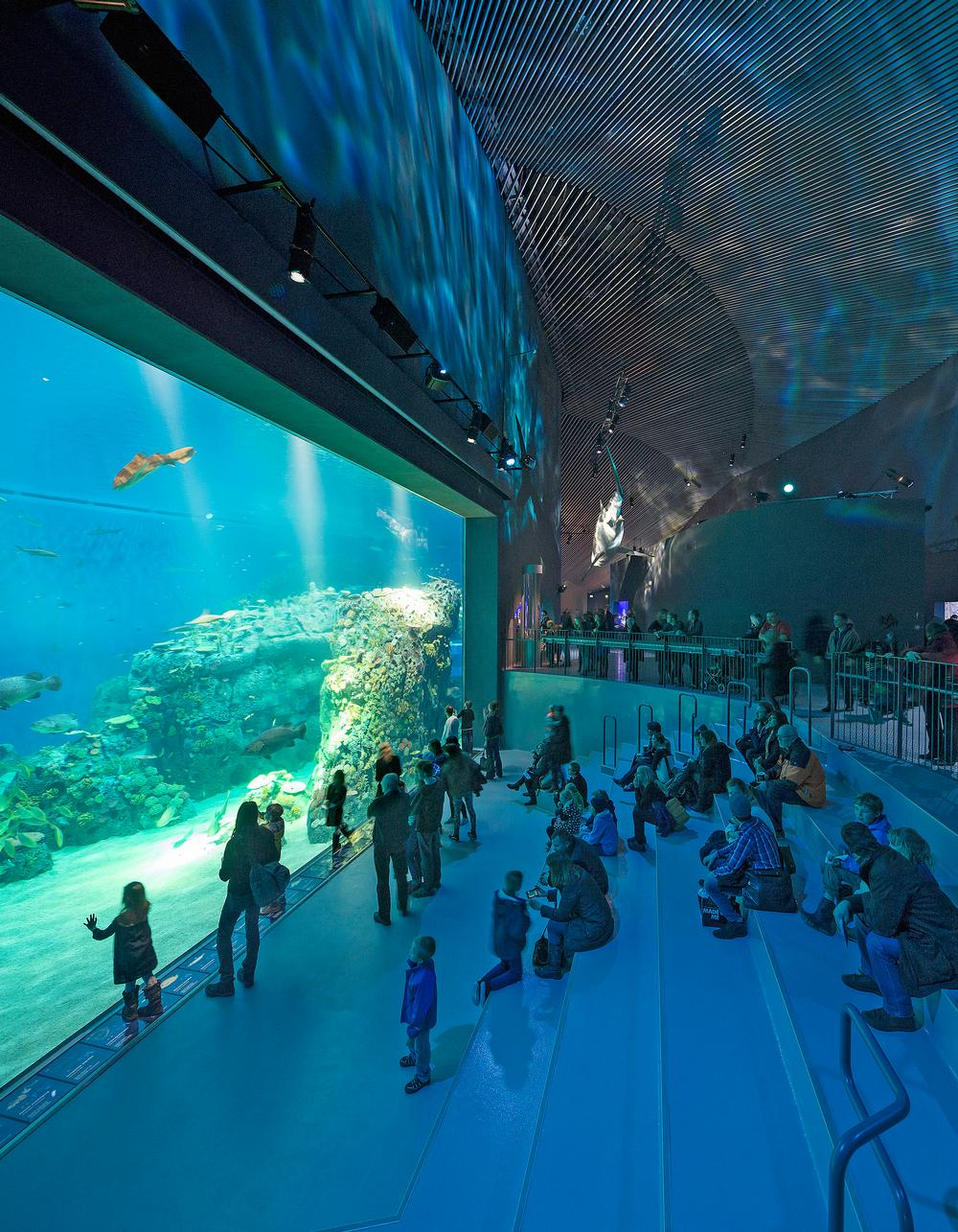 Denmark's Den Blå Planet, designed by 3XN, is the largest aquarium in Northern Europe / PHOTO: ADAM MØRK
