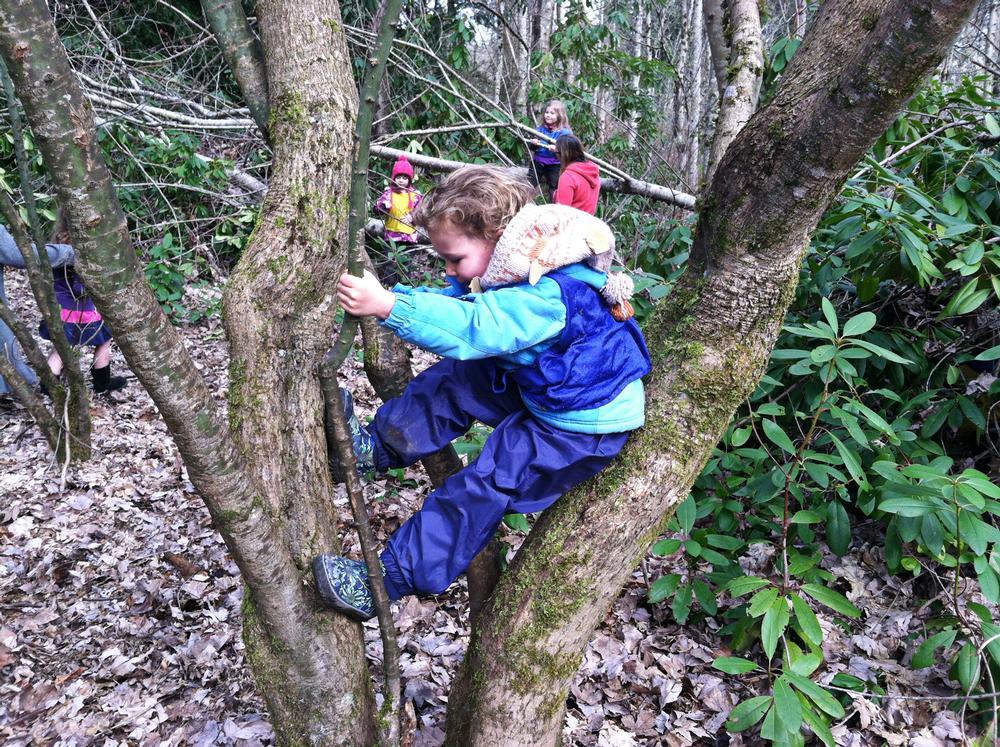 Tiny Treks pupils are encouraged to climb