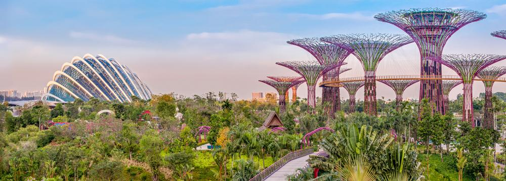Visitors to Gardens by the Bay in Singapore are completely removed from the nearby city