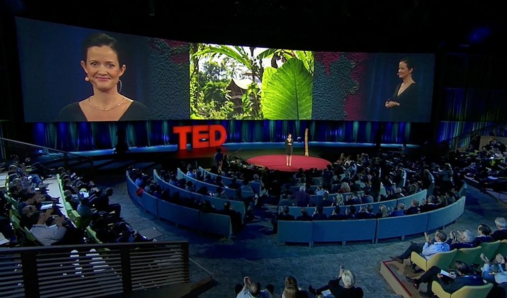Elora Hardy's TED talk in 2015