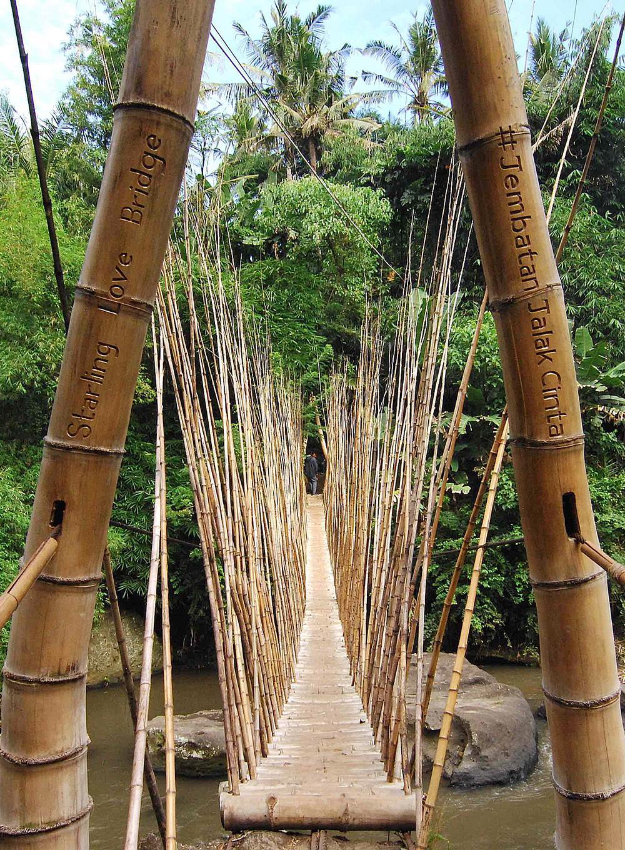The Green School's Starling Love Bridge