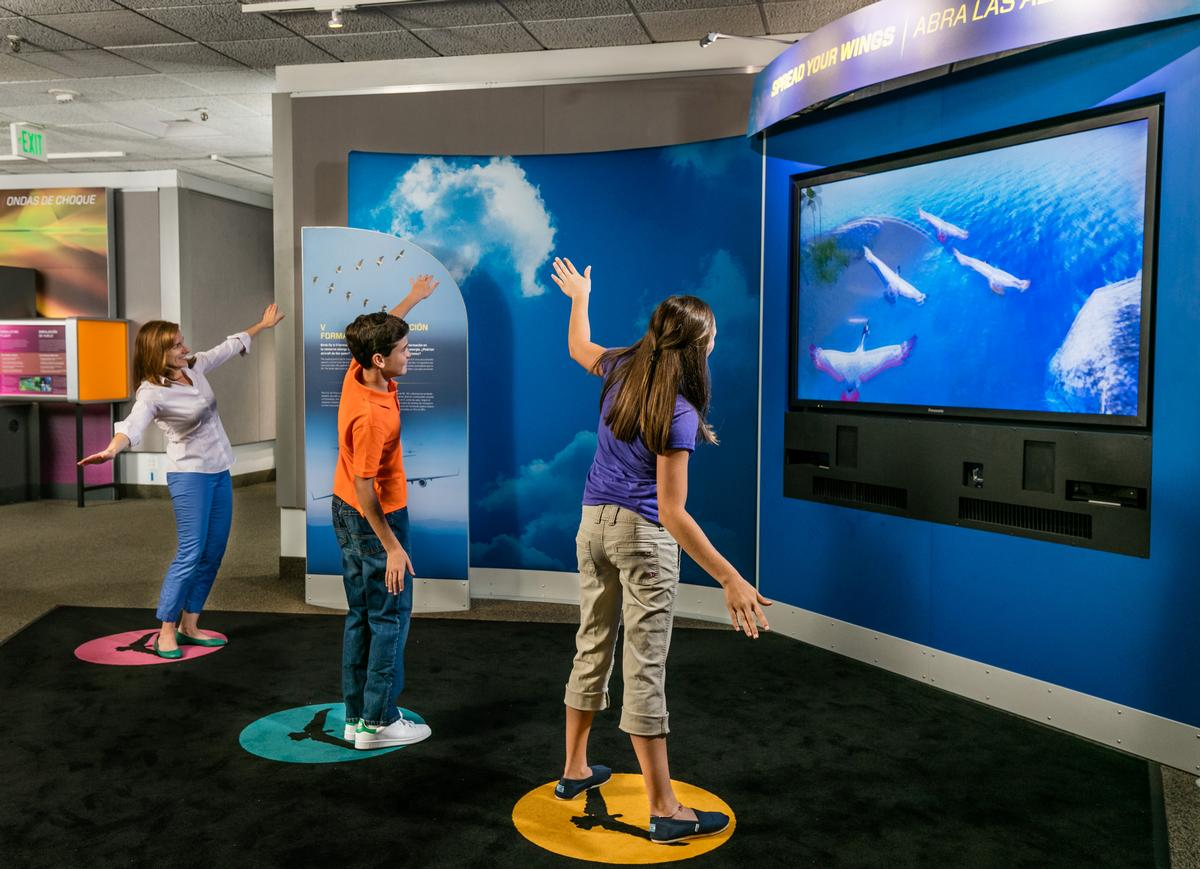 One exhibit teaches visitors how flight works in birds, using advanced tech to allow them to virtually fly in a flock