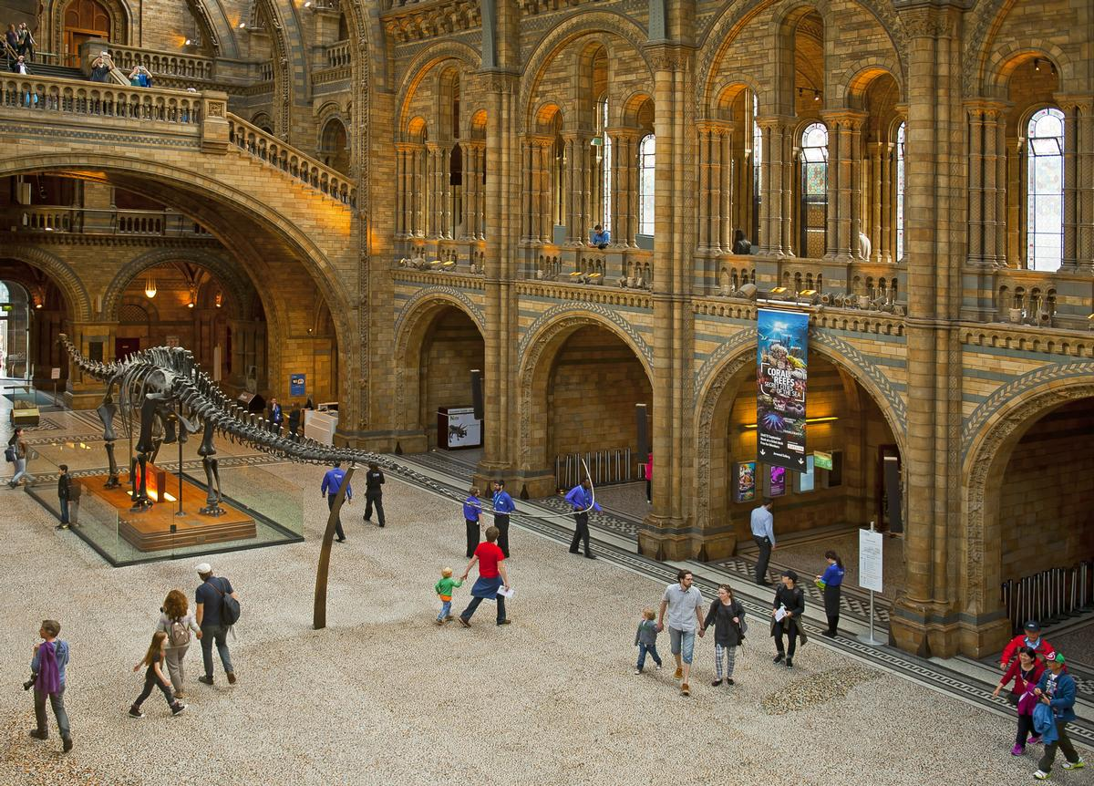 The Natural History Museum's Hintze Hall will be the location of the silent disco / Shutterstock.com