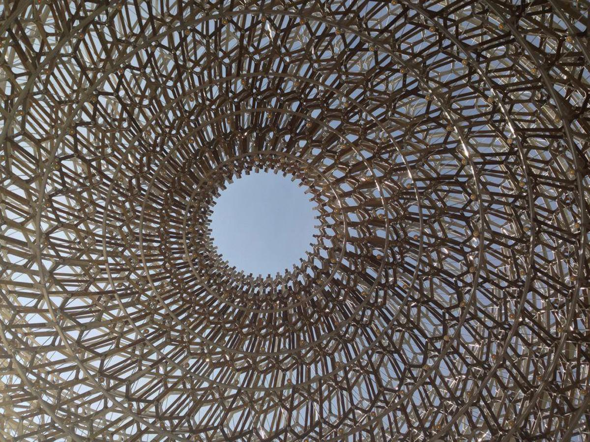 The pavilion explores life within a beehive / Wolfgang Buttress