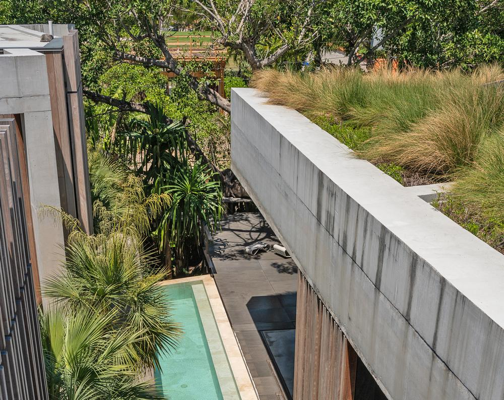 Floor to ceiling windows let in natural light and offer views of the vegetation. The pool provides a sense of coolness