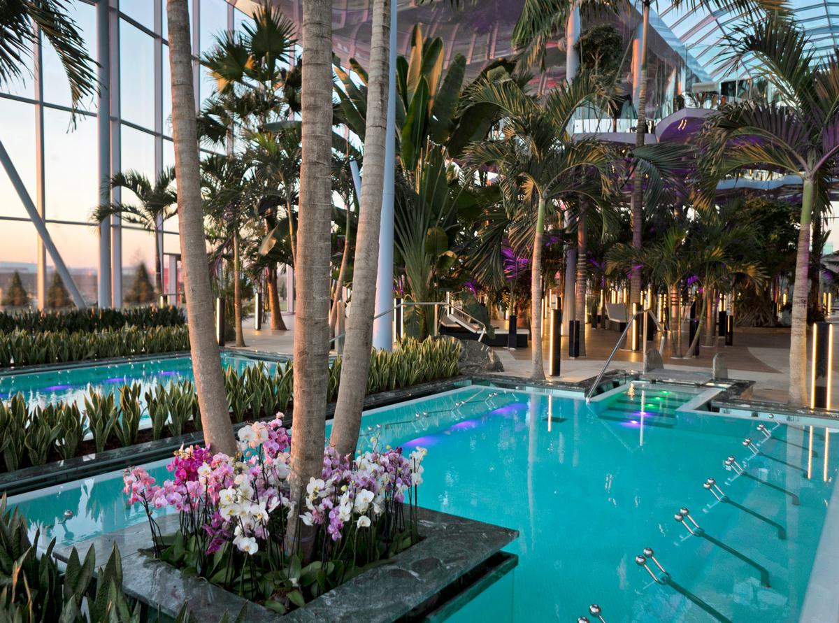 The plants at Therme Bucharest are brought in from four continents, and include more than 1,200 trees, 3,000 shrubs, 600,000 flowers, 40,000 roses, 60,000 euonymus and 500 palm trees / Therme Bucharest