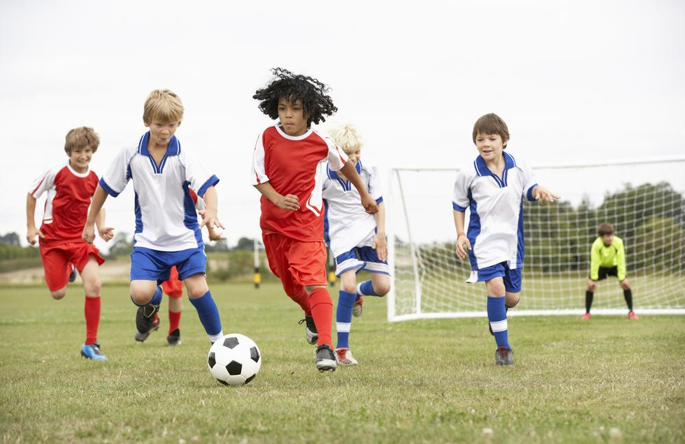 Use software to optimise sports pitch and court bookings / photo: www.shutterstock.com/monkey business images