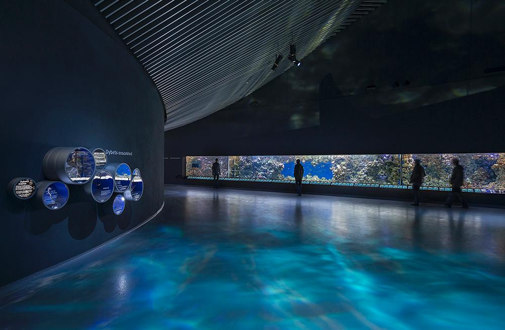 The interior design aims to create the impression that visitors are under the sea