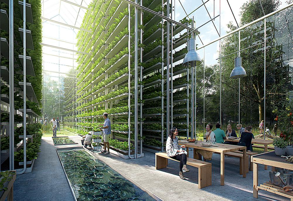 Health and wellbeing design is an emerging specialism / ©EFFEKT Architects