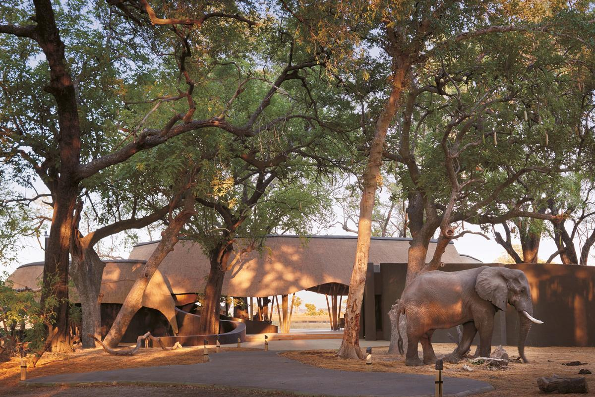 Twelve guest pavilions are inspired by the huge ant nests which are a prominent feature of the local landscape / Belmond Eagle Island Lodge Botswana