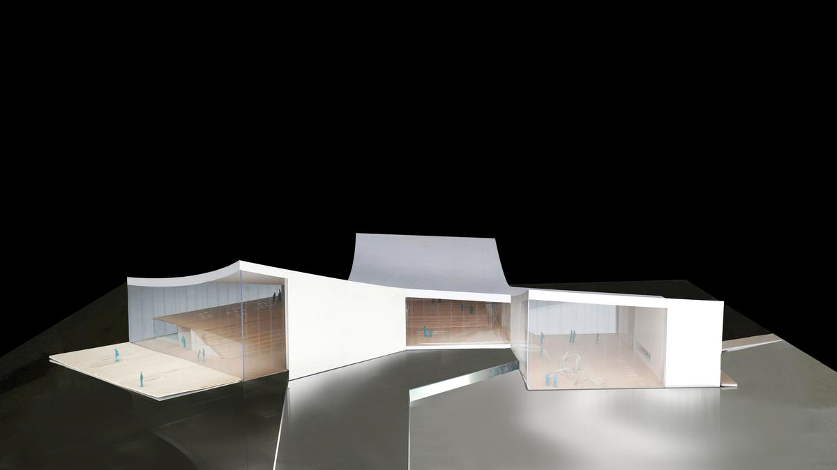All the interiors will be linked by a curved, unifying roof / Schmidt Hammer Lassen