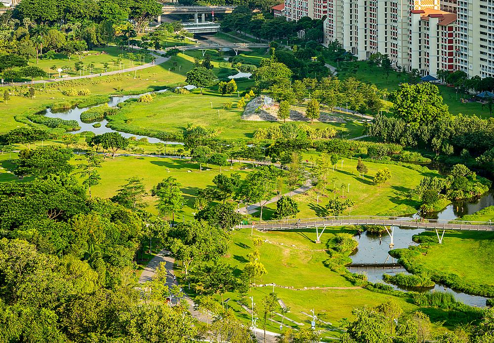 The Bishan-Ang Mo Kio Park project saw a drainage channel transformed into a naturalised river, attracting flora and fauna / Photos: Ramboll Studio Dreiseitl