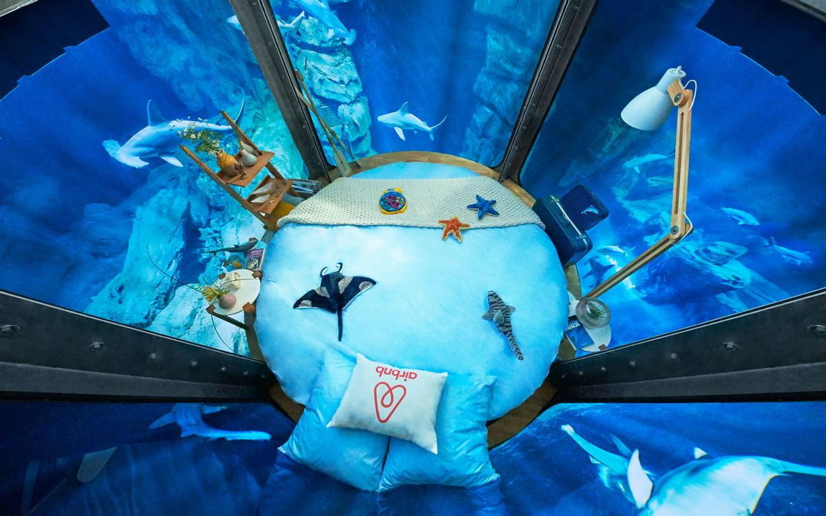 The underwater bedroom is the latest innovative design from Airbnb / Airbnb