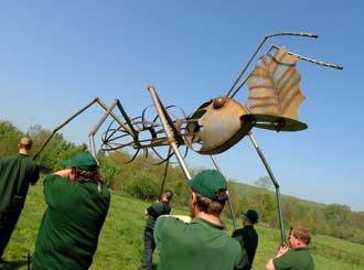 Giant ants invading Longleat