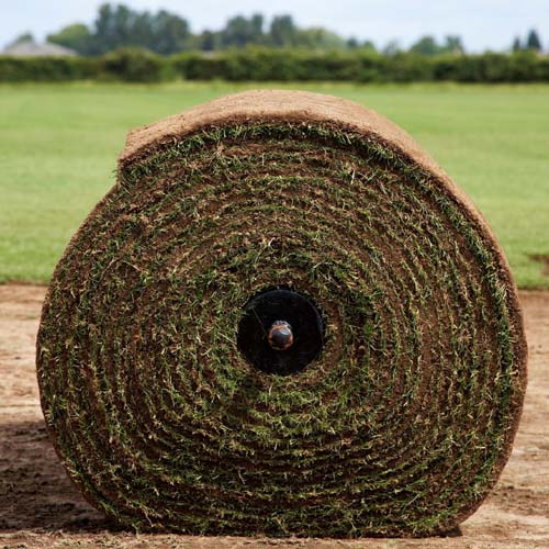 Rolawn adds to turf laying series