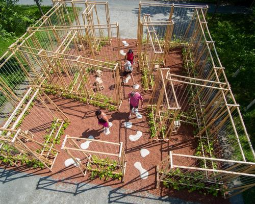The Maison de Jacques is 'forest of beans' that will grow over time / International Garden Festival