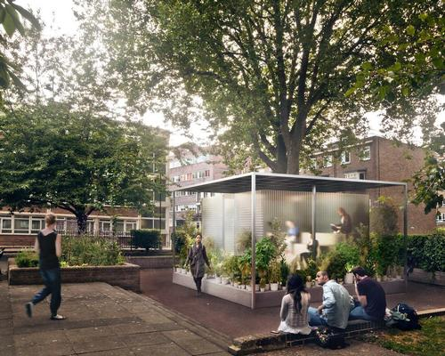 Asif Khan's tiny forests for London / MINI Living
