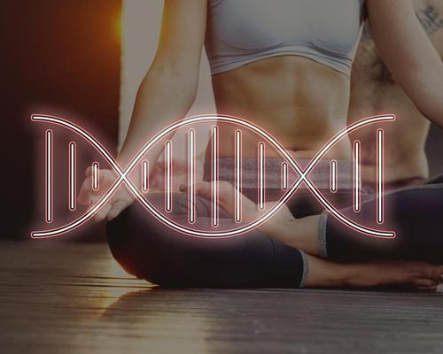 DNA profiling will give members information about their response to power or endurance exercise, food sensitivities, and recovery times