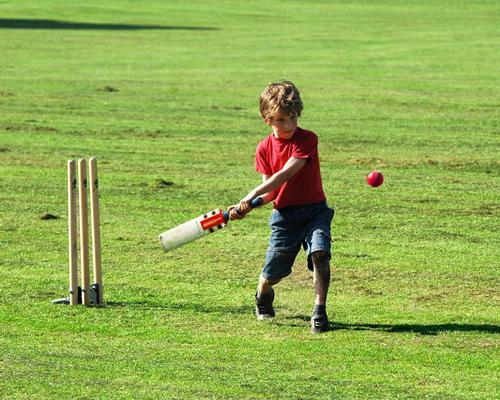 Spirit of 2012 looking for partners to deliver £1.8m cricket initiative