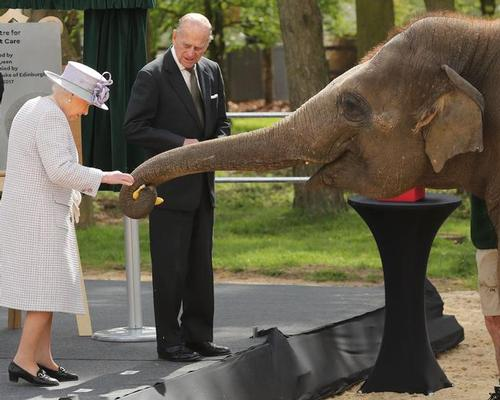 Queen opens new £2m elephant centre at Whipsnade Zoo