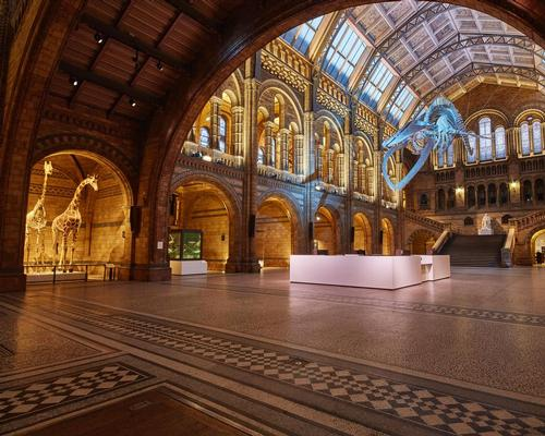 Environmental and exhibition design practice Casson Mann was selected to reinvigorate the iconic Hintze Hall / NHM