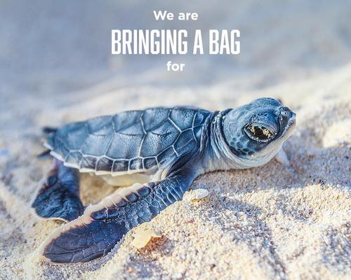 The partnership – initially founded by Monterey Bay Aquarium, National Aquarium, and Shedd Aquarium – is making a commitment to eliminate single-use plastic straws and bags in its aquariums