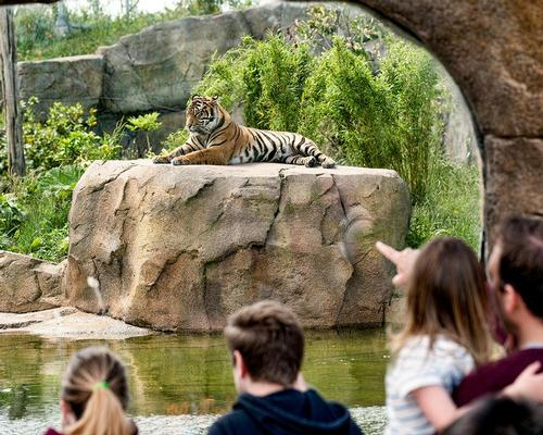 Exclusive: Chester Zoo MD details £100m redevelopment masterplan