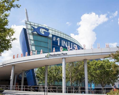 Plans for a major expansion at Georgia Aquarium, Atlanta, are under way