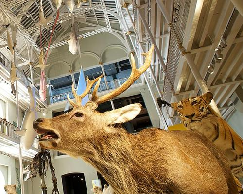 The National Museum of Scotland attracted more than 2 million visitors for the first time in its history / National Museums of Scotland