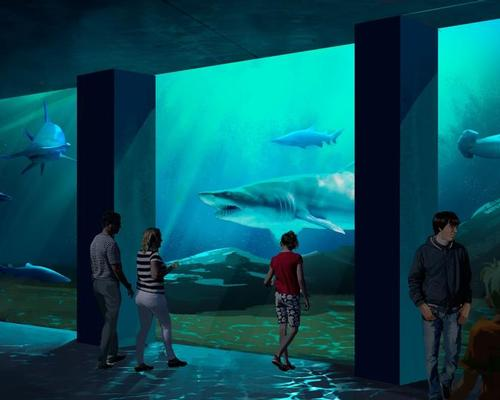 Giant shark tank forms centrepiece of Georgia Aquarium expansion