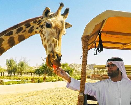 Dubai Safari to close just 6 months after opening for renovations