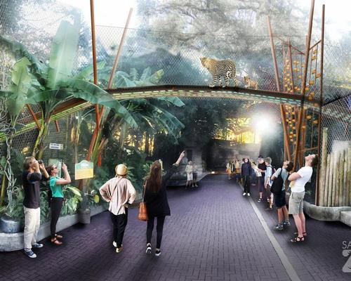 A jaguar habitat could see the animals walk over passing visitors on a special bridge / San Antonio Zoo