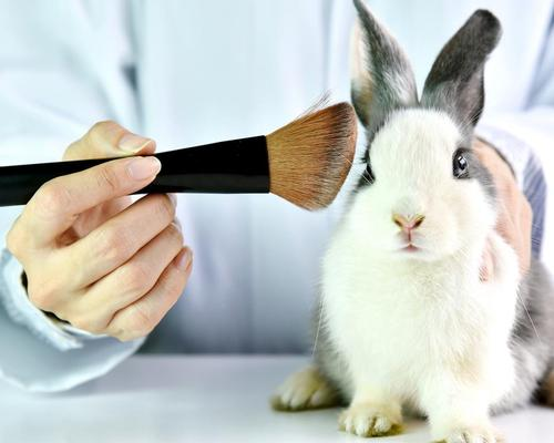 California would be the first US state to pass a law banning the sale of cosmetics tested on animals