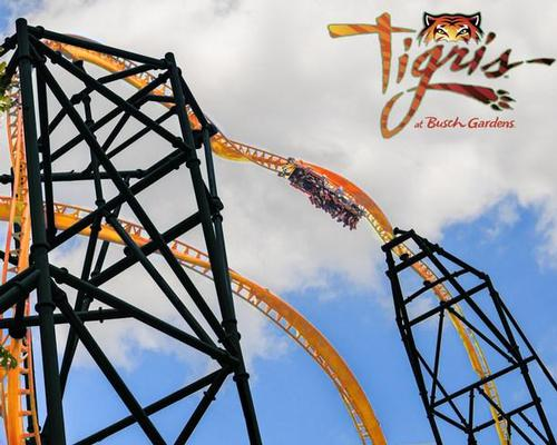 Eye of the Tigris: tallest launch coaster in Florida coming to Busch Gardens