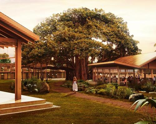 A huge Banyan tree is at the centre of the resort / Mohsin Cooper