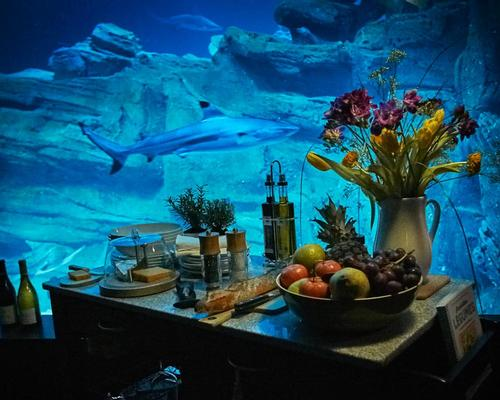 Guests will dine under the water, surrounded by the sharks / Airbnb