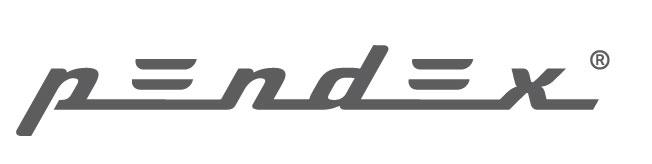 Company profile: Pendex Fisio S.L.