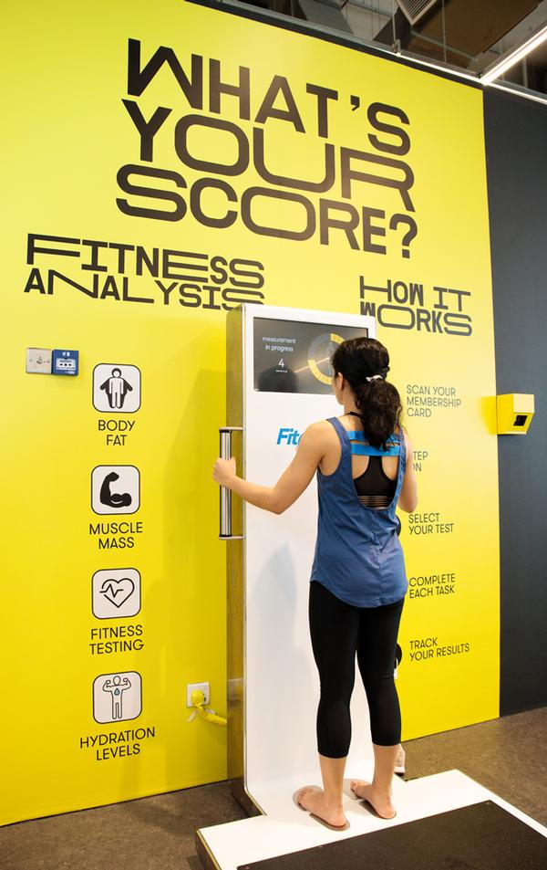 Flint says GoFit, a no-frills, budget gym chain, could grow to 1,000 clubs through franchising over the next five years
