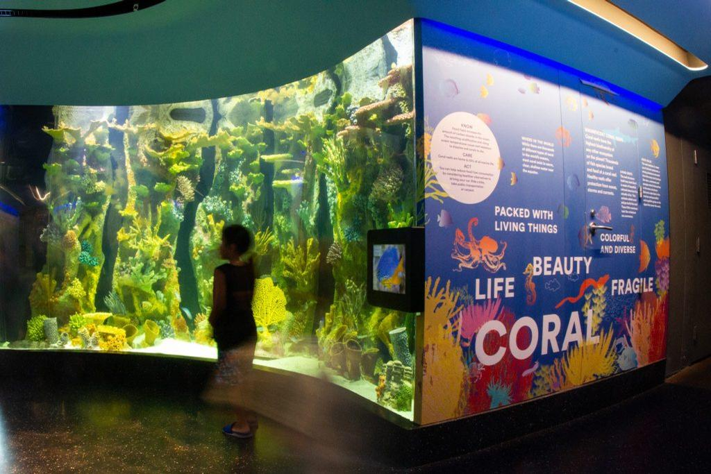 The redeveloped aquarium now offers a more immersive experience / Duggal Visual Solutions