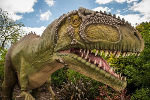 From May until September the dinosaurs will be visiting - animatronic ones at least / Chester Zoo