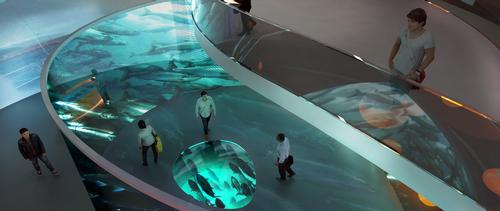 Inside, the concept calls for interactive displays and wall projections